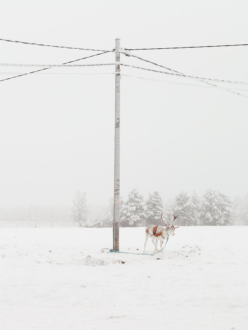 LAPLAND | 2015​​  Limited Edition Print   from Lapland | Arctic Cicle   $  500